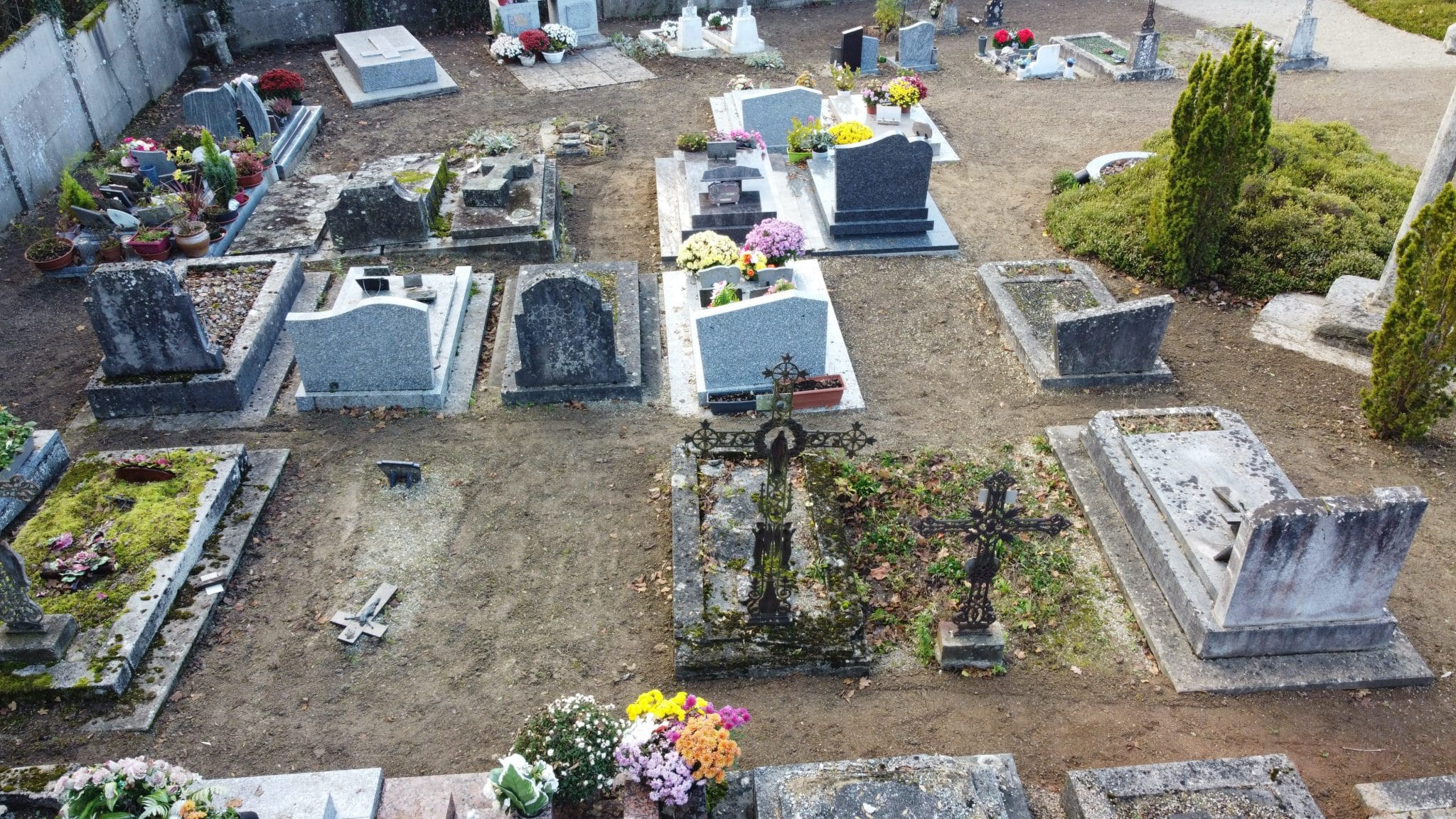 Les allées du cimetière engazonnées